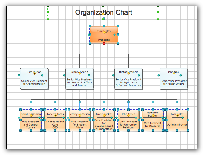 sample organizational charts our organizational chart