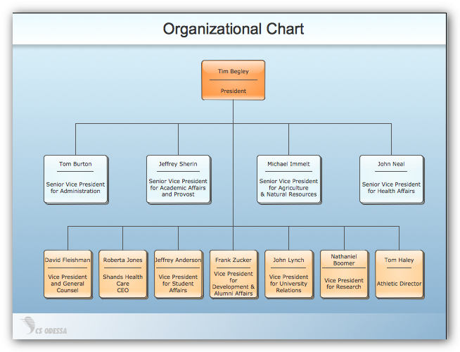 Sample organizational charts our organizational chart software sample organizational charts our organizational chart software lets you create clear org charts ccuart